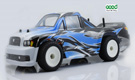 1/16 Brushless Edition Rally Truck RTR
